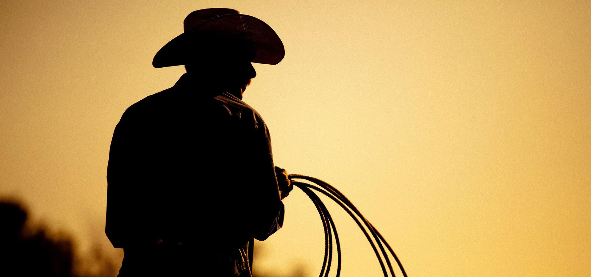 rodeo-inner